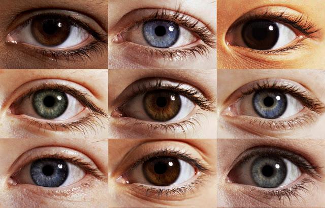 رنگ چشم انسان